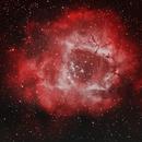 Rosette Nebula,                                David Dvali