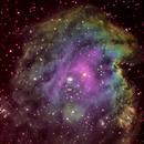 IC2159,                                Tapio
