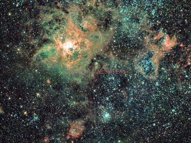 Tarantula Nebula,                                Malcolm Ellis