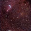 cometa 21P sotto la nebulosa Cono,                                Rolando Ligustri