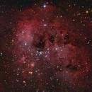 The Tadpole Nebula (IC 410) in HaRGB,                                Marcel Nowaczyk