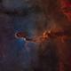 IC 1396,                                Gary Imm