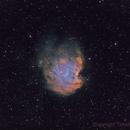 NGC 2175 - Monkey head nebula,                                TimotheusIan