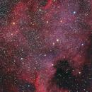 North American Nebula,                                Dean Salman