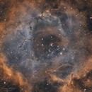 Rosette Nebula Narrowband (alt),                                Nicolas Kizilian