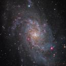 M33 RH305 - Deep Sky West Remote Observatory,                                Deep Sky West (Lloyd)