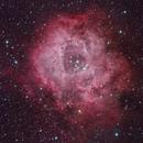 Rosette Nebula,                                David Frost