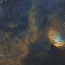 SH2-101 Tulip Nebula,                                Peter Jenkins