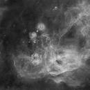 The Gum Nebula,                                John Gleason