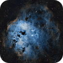 Tadpole Nebula (IC 410),Fly Nebula (NGC 1931),                                Rhett Herring