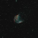 The Medusa Nebula, SH2-274, Abell 21,                                Steven Bellavia