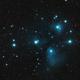 M45,                                Chris Flory