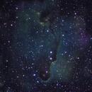 IC 1396,                                tseckler