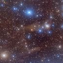 The cosmic bat - NGC 1788,                                Yu-Peng Chan
