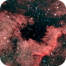 NGC 7000, North America Nebula,                                David Scharlach