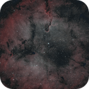 IC1396 - Elephant's Trunk in HOO,                                Richard Bratt
