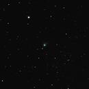 Comet C/2013 US10 Catalina,                                Wil