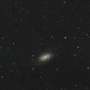 NGC2903,                                Zach Coldebella