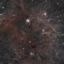 NGC 1333 & vdB 16 - Two Panel Mosaic,                                Jarrett Trezzo