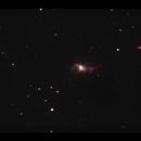 C69 Bug Nebula - closeup,                                Adel Kildeev