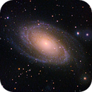 M81 and Holmberg IX,                                David Redwine