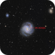 M61 SN2020jfo,                                Casey Good
