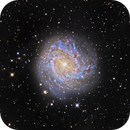M83 - The Souther Pinwheel Galaxy,                                bbonic