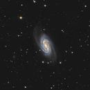NGC 2903,                                Gene