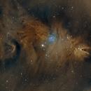 NGC 2264 the Cone Nebula,                                Bret Waddington