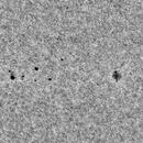 WL landscape, today: the AR12816, -90 deg. rotated.,                                Gabriel - Uranus7