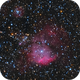 NGC 2467 Scull and Crossbones Nebula,                                Jerry Macon