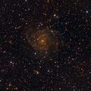 IC 342,                                Joerg Meier