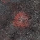 IC1396,                                rayzor