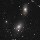 NGC3169 - 3166 Group,                                Albert van Duin