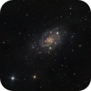 NGC2403,                                iva