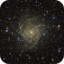 IC342 / Caldwell 5,                                Stefan Bauer