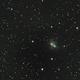 NGC1788  A Reflection Nebula,                                Zach Coldebella