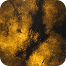 Sadr Region - IC 1318 (HOO Combination),                                William Tan