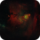 In time for the holidays: NGC 2264 Christmas Tree,                                Chris Hunt