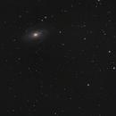 M81-82 NGC3077,                                Manuel Frattini