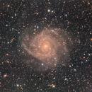 """IC342 - """"The Hidden Galaxy"""" in Camelopardalis,                                Jan Sjoerd de Vries"""