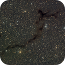 B150 Seahorse dark nebula,                                Brandon Liew