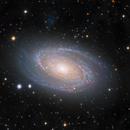 M81 L(HA+R)GB Under Light Polluted Skies,                                Ezequiel