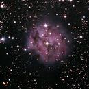 IC 5146 (Cocoon nebula),                                neptun