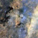 Barnard 344 / LBN 234,                                Gkar