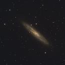 NGC 253 Sculptor Galaxy Silver Dollar,                                Konstantin Katushev