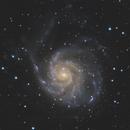 M101 - Galaxie du Moulinet,                                Caillault Guillaume