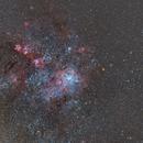 NGC 2070,                                Mario Richter