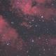 IC1318 Butterfly Nebula,                                Kathy Walker