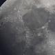 The Moon,                                mazeppa